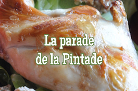 Recettes pintade