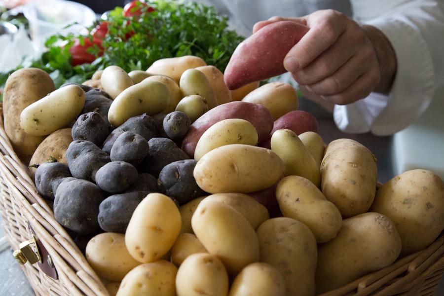 tout savoir sur les pommes de terre pour bien les cuisiner   envie