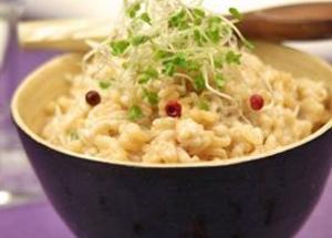 Risotto, paëlla, cantonnais ou riz au lait, plus de 30 recettes à base de riz faciles et parfumées