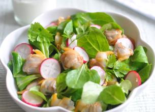 Salade de coques aux radis roses et aux herbes vertes